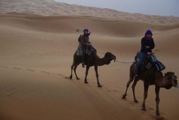 Desert Tour 2days